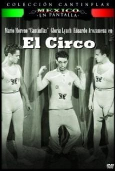 Il circo online streaming