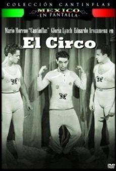 Ver película El circo