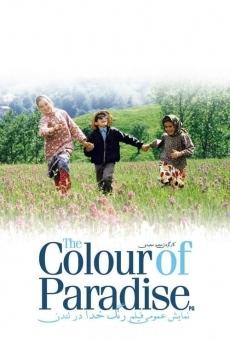 Ver película El color del paraíso