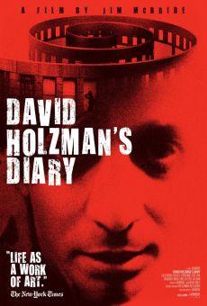 Ver película El diario de David Holzman