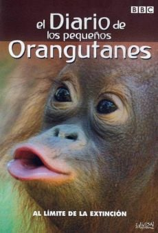 The Diary of Young Orangutans on-line gratuito