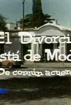 Ver película El divorcio está de moda