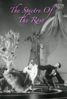 Ver película El espectro de la rosa