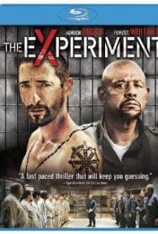 Ver película El experimento