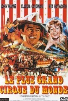 Ver película El fabuloso mundo del circo