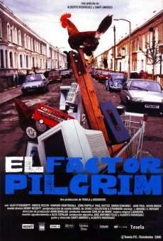 Ver película El factor Pilgrim