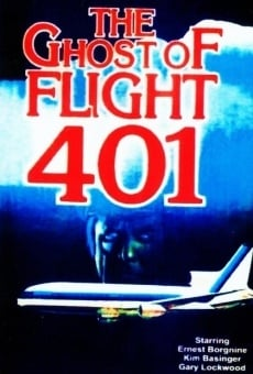 Ver película El fantasma del vuelo 401