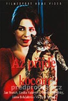 Ver película El gato de Cassandra