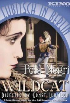 Ver película El gato montés