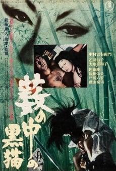 Ver película El gato negro