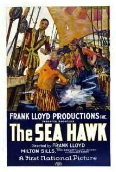 Ver película El gavilán de los mares