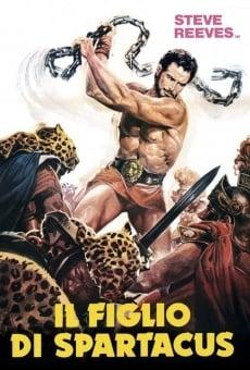 Il Figlio di Spartacus on-line gratuito