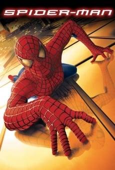 El Hombre Araña online