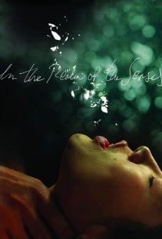 In the Realm of the Senses en ligne gratuit