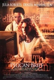 Ver película El informe Pelícano