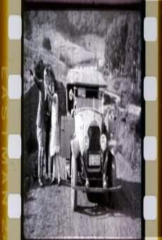 Ver película El ladrón de los guantes blancos