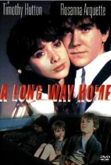 Ver película El largo regreso a casa