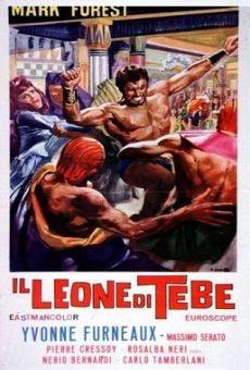 Ver película El león de Tebas