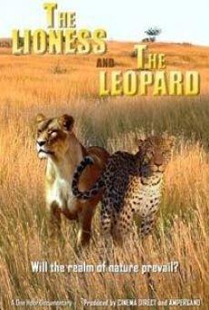 Lion et Léopard: une Amitié Particulière