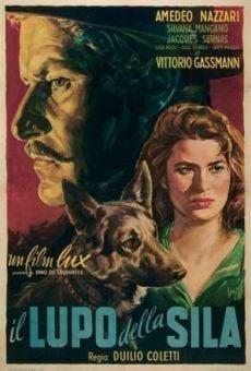 Ver película El lobo de la Sila