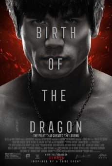 Birth of the Dragon en ligne gratuit
