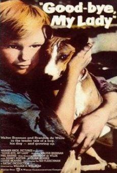Ver película El niño y el perro