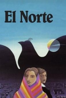 Ver película El Norte