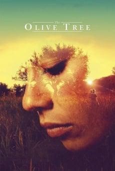 L'olivier en ligne gratuit