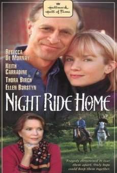 Ver película El oscuro camino a casa