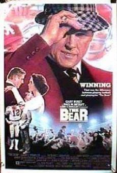 Ver película El oso