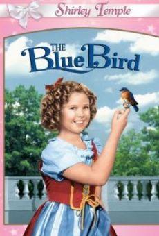 Ver película El pájaro azul