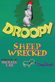 Ver película El pastor de ovejas