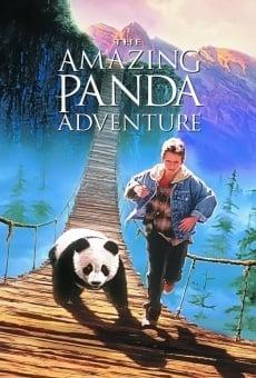 El pequeño panda online