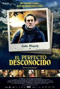 Ver película El perfecto desconocido