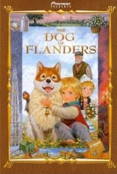 Ver película El perro de Flandes