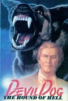 Ver película El perro del infierno