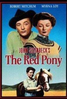 Ver película El poni rojo