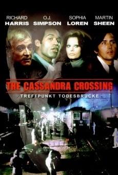 Ver película El puente de Cassandra