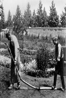 Le jardinier streaming en ligne gratuit