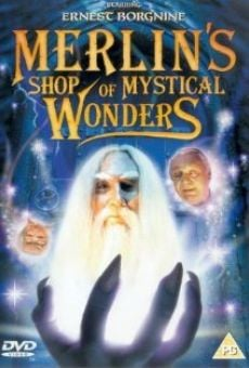 Merlin's Shop of Mystical Wonders on-line gratuito