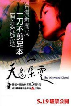 Tian bian yi duo yun (The Wayward Cloud)