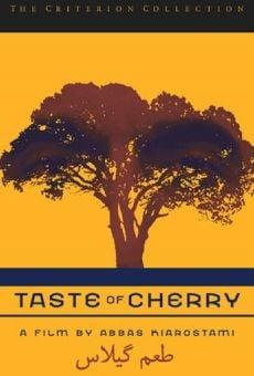 Ver película El sabor de las cerezas