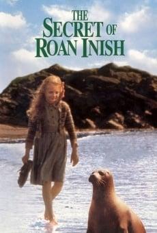 Ver película El secreto de la isla de las focas