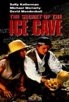 The Secret of the Ice Cave on-line gratuito