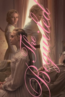 The Beguiled online free
