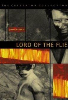 Ver película El señor de las moscas