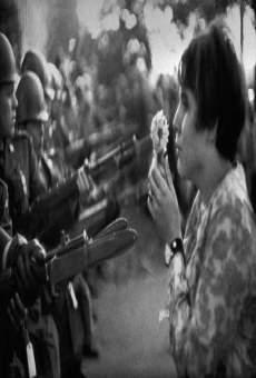 Ver película El sexto lado del Pentágono