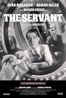 Ver película El sirviente