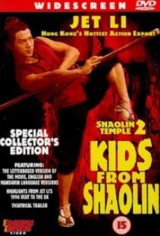 Ver película El templo de Shaolin 2