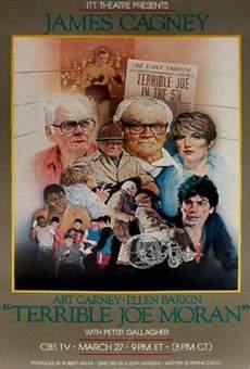 Ver película El terrible Joe Moran